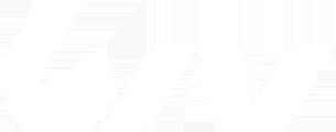 logo_liv